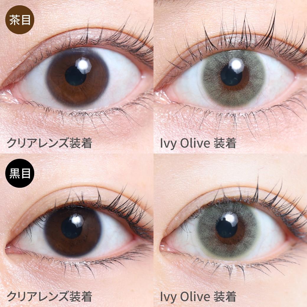 度あり・度なし アイビーオリーブ茶目黒目着用画像 神秘的な深みのある、オリーブカラーで、自然な色素薄い系の瞳に