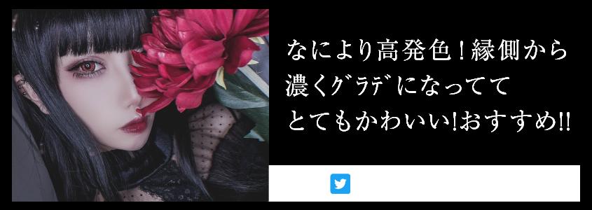 「Edel Series(エーデルシリーズ)」フランメレッドリアル装着画3