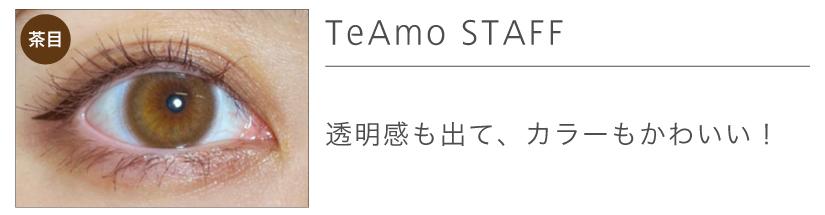 「TeAmo 1DAY(ティアモワンデー)」ビアナブラウンリアル装着画3