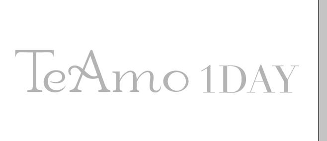 「TeAmo 1DAY(ティアモワンデー)」ロゴ