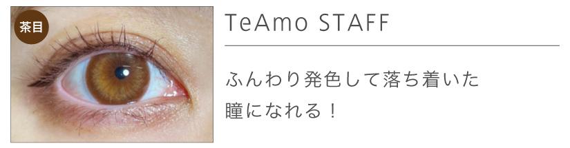 「TeAmo 1DAY(ティアモワンデー)」エメブラウンリアル装着画2