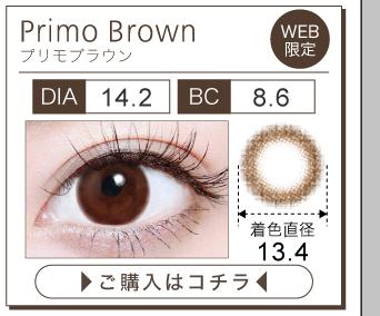 「TeAmo 1DAY(ティアモワンデー)」プリモブラウン購入ページボタン